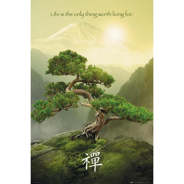 Gravura para Quadros Life Is The Only Thing Worth Living For - Ph0449 - 60x90 Cm