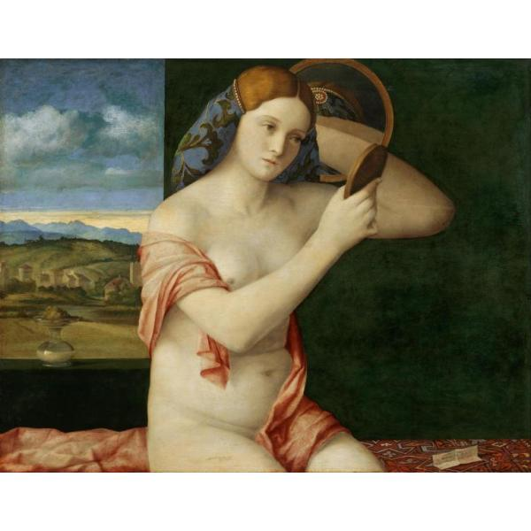 Gravura para Quadro Young Woman At Her Toilette - Afi2809